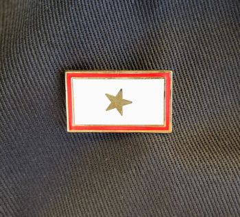 Hat Pin Gold Star